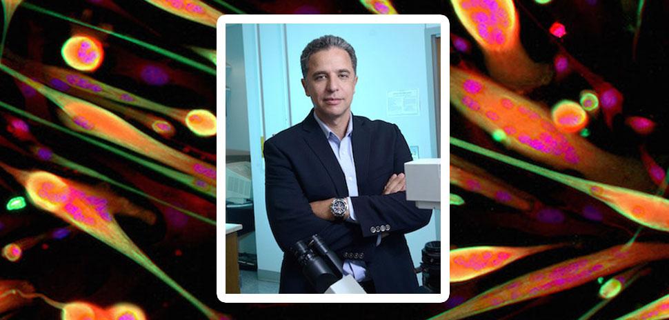 Dr. Hesham Sadek