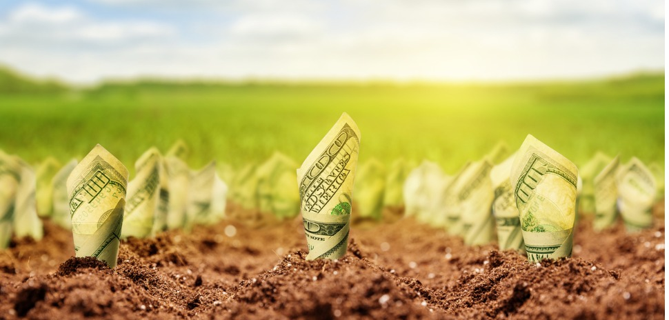 Agricultural Crowdfunding