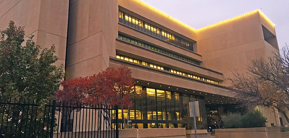 Dallas Public library census