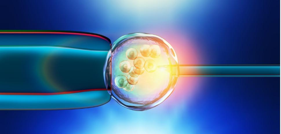 fertility concept iStock