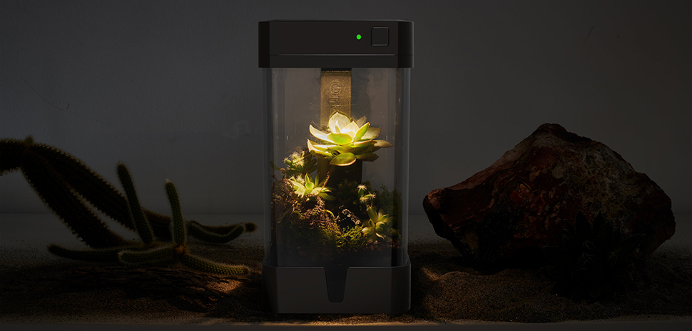 Dallas Inventor Gives Gardening A Technology Makeover With Mini