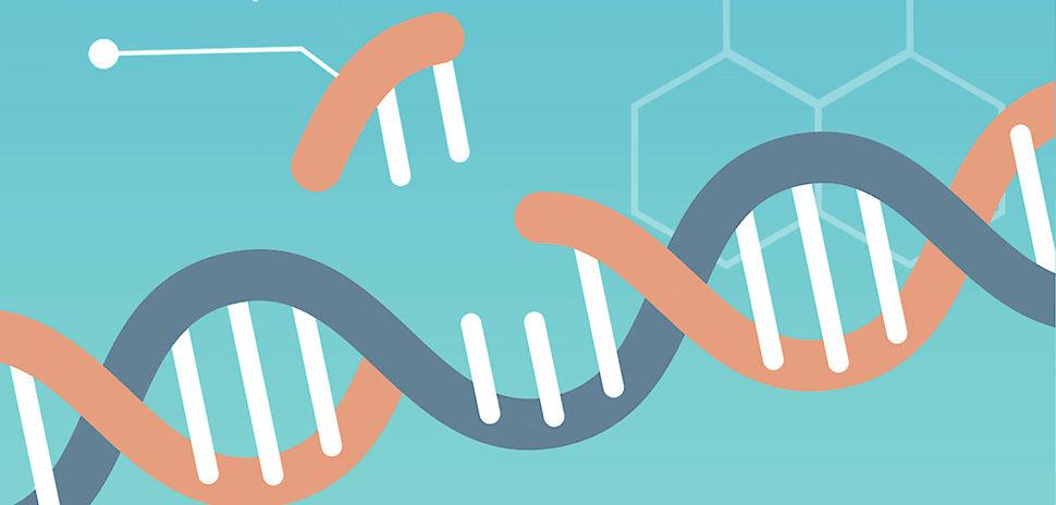 CRISPR CAS9 gene editing background