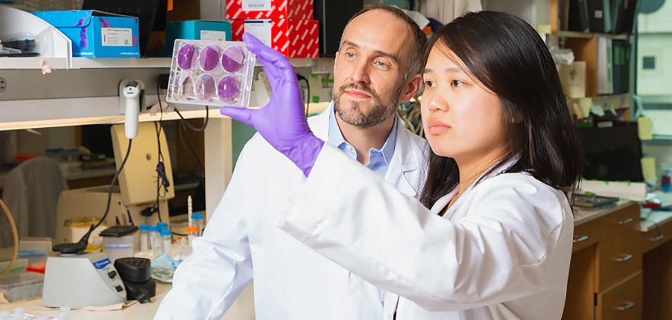 coronavirus Dallas researchers