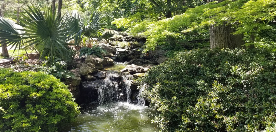 fort worth botanical garden collaborative partnership with BRIT