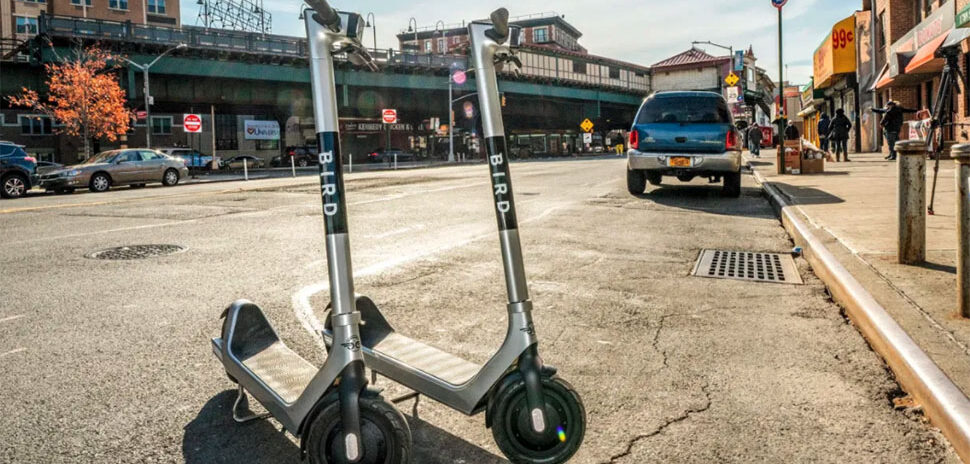 Bird escooter pilot in NYC