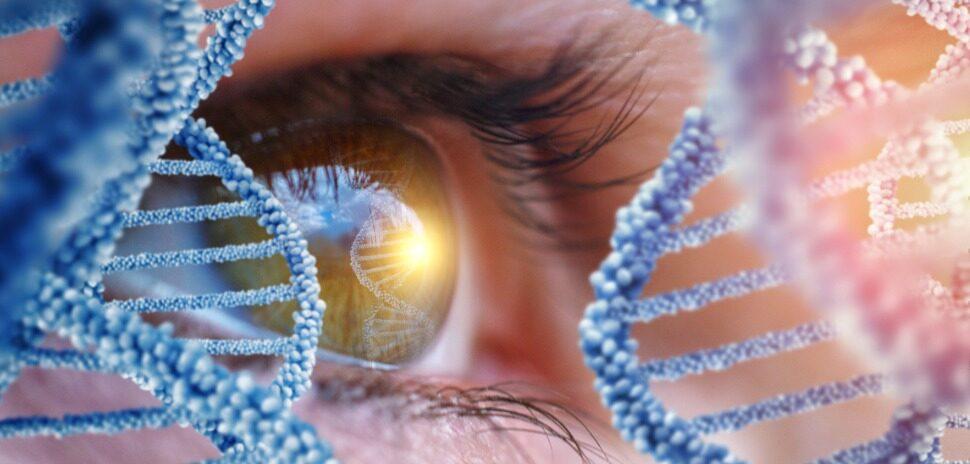 EYE DNA DALLAS STARTUP GENE THERAPY